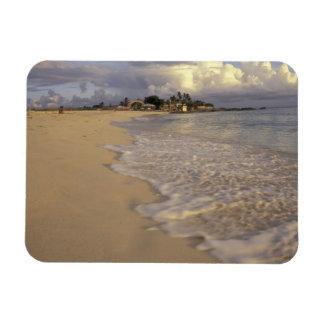 Caribbean, St. Martin (St. Maarten). Maho Bay Magnet