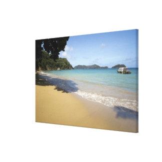 Caribbean - Tobago - Beach along Atlantic Canvas Print