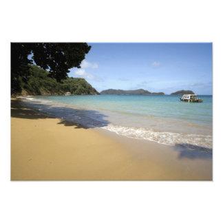 Caribbean - Tobago - Beach along Atlantic Photo Print