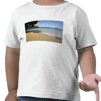 Caribbean - Tobago - Beach along Atlantic Tshirt