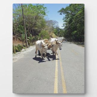 caribbean transportation display plaques