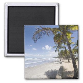 Caribbean - Trinidad - Manzanilla Beach on 2 Inch Square Magnet