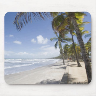 Caribbean - Trinidad - Manzanilla Beach on Mouse Pad