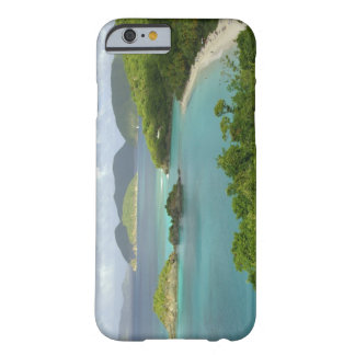 Caribbean, U.S. Virgin Islands, St. John, Trunk 2 Barely There iPhone 6 Case