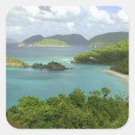 Caribbean, U.S. Virgin Islands, St. John, Trunk 2 Square Sticker