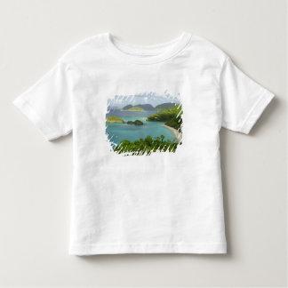 Caribbean, U.S. Virgin Islands, St. John, Trunk 2 Toddler T-shirt