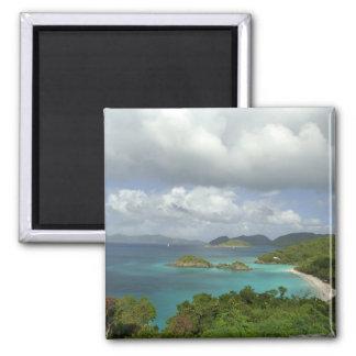 Caribbean, U.S. Virgin Islands, St. John, Trunk 3 2 Inch Square Magnet