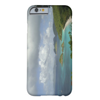 Caribbean, U.S. Virgin Islands, St. John, Trunk 3 Barely There iPhone 6 Case