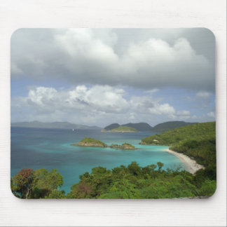 Caribbean, U.S. Virgin Islands, St. John, Trunk 3 Mouse Pad