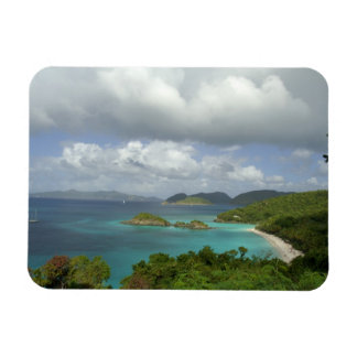 Caribbean, U.S. Virgin Islands, St. John, Trunk 3 Rectangular Photo Magnet