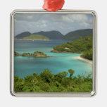 Caribbean, U.S. Virgin Islands, St. John, Trunk Metal Ornament