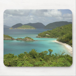 Caribbean, U.S. Virgin Islands, St. John, Trunk Mouse Pad