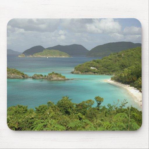 Caribbean, U.S. Virgin Islands, St. John, Trunk Mouse Pad