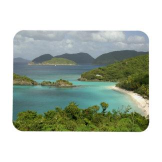 Caribbean, U.S. Virgin Islands, St. John, Trunk Rectangular Photo Magnet