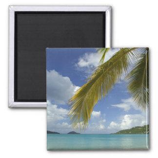 Caribbean, U.S. Virgin Islands, St.Thomas, 2 Inch Square Magnet