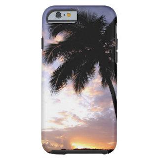 Caribbean, U.S. Virgin Islands, St.Thomas, 3 Tough iPhone 6 Case