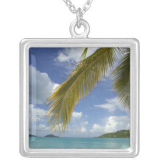 Caribbean, U.S. Virgin Islands, St.Thomas, Silver Plated Necklace