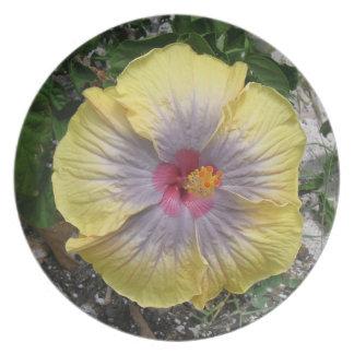 Caribbean Yellow Kissed HIbiscus Flower Dinner Plates