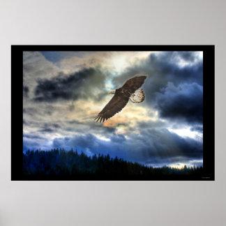 Cariboo Bald Eagle & Sunset Motivational Poster