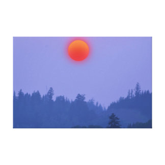 Cariboo Forest Sunset Motivational Nature Scenery Canvas Print