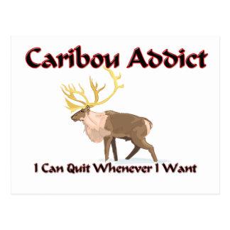 Caribou Addict Postcard
