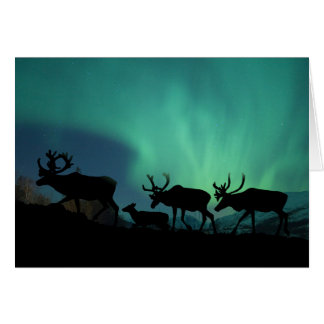Caribou and Northern Lights Card