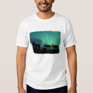 Caribou and Northern Lights T-shirt