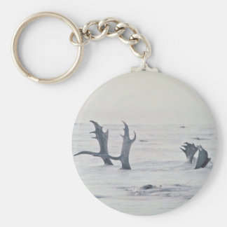 Caribou antlers in snow keychains
