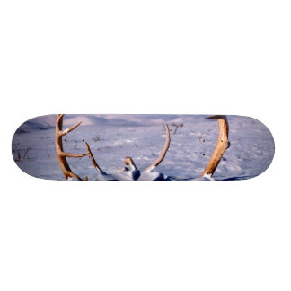 Caribou Antlers in The Snow Skateboard Deck