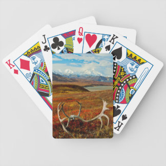 Caribou Antlers On The Alaskan Tundra Bicycle Playing Cards