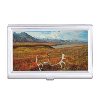Caribou Antlers On The Alaskan Tundra Business Card Holder
