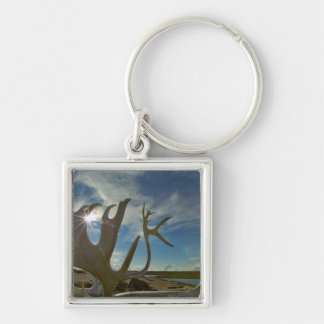 Caribou antlers on the sandy ground in the Silver-Colored square keychain