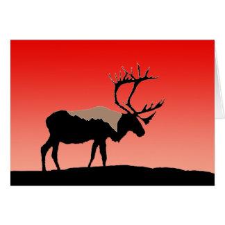 Caribou at Sunset Card