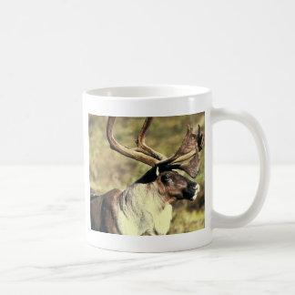 Caribou Coffee Mug