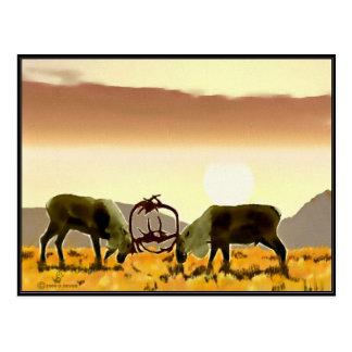 Caribou Duel Postcard