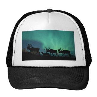 Caribou Trucker Hat