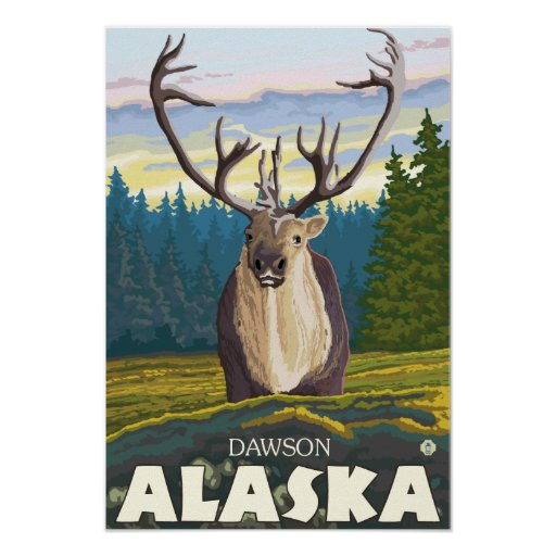 Caribou in the Wild - Dawson, Alaska Poster