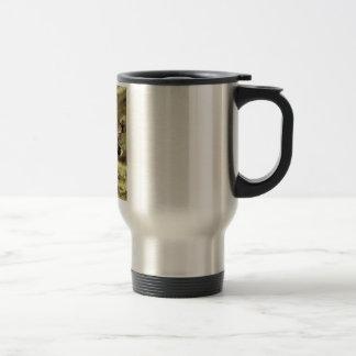 Caribou Coffee Mugs