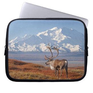 caribou, Rangifer tarandus, bull in fall colors Laptop Sleeve