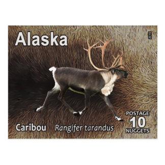Caribou (Reindeer) - Alaska Postage Postcard
