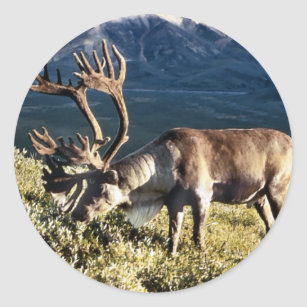 Caribou / Reindeer Lovers Classic Round Sticker