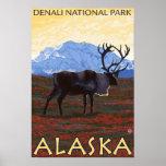Caribou Scene - Denali National Park, Alaska Posters