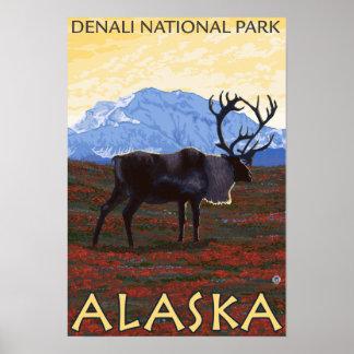 Caribou Scene - Denali National Park, Alaska Poster