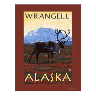 Caribou Scene - Wrangell, Alaska Postcard