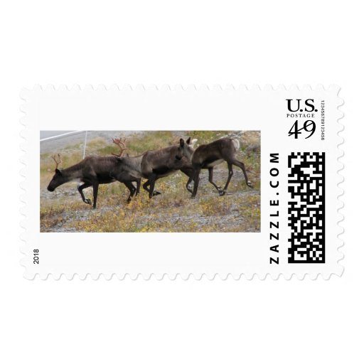 Caribou Trot Postage Stamps