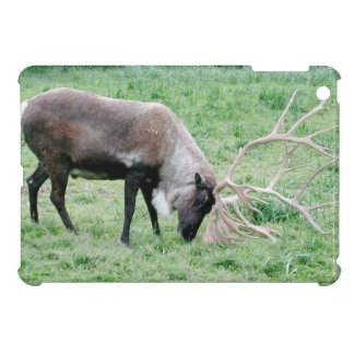 Caribou with Large Antlers iPad Mini Cover