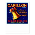 Carillon Florida Grapefruits Postcard