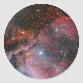 Carina Nebula around the Wolf Rayet star WR 22 Classic Round Sticker