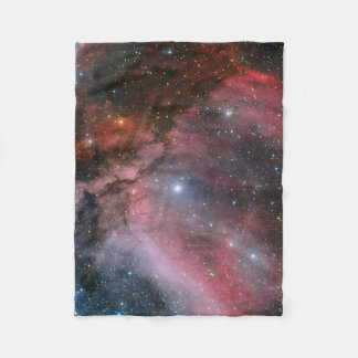 Carina Nebula around the Wolf–Rayet star WR 22 Fleece Blanket