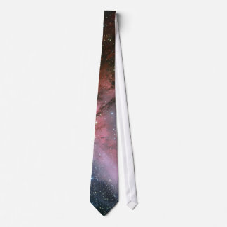 Carina Nebula around the Wolf–Rayet star WR 22 Neck Tie